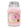 Yankee Candle Blush Bouquet ist ein zarter Pfingstrosen Duft, mit einem Hauch von Lilien und Zitrusblüten.